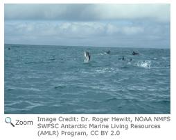 Ocean Zones - NatureWorks